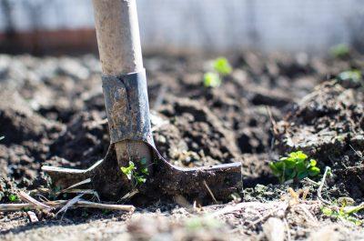 Tipos de solo - pá fincada na terra