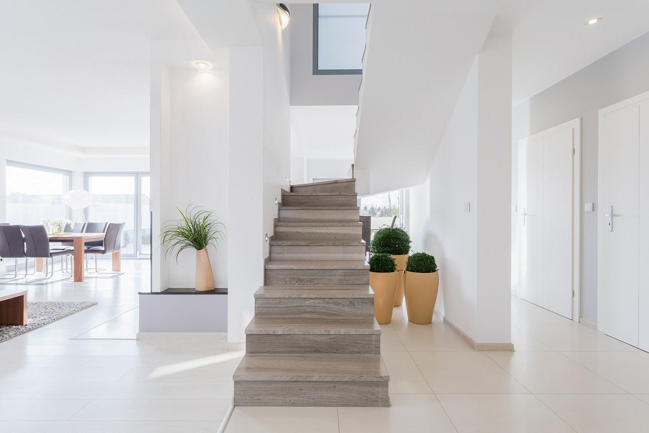 Embaixo da escada - vasos com plantas