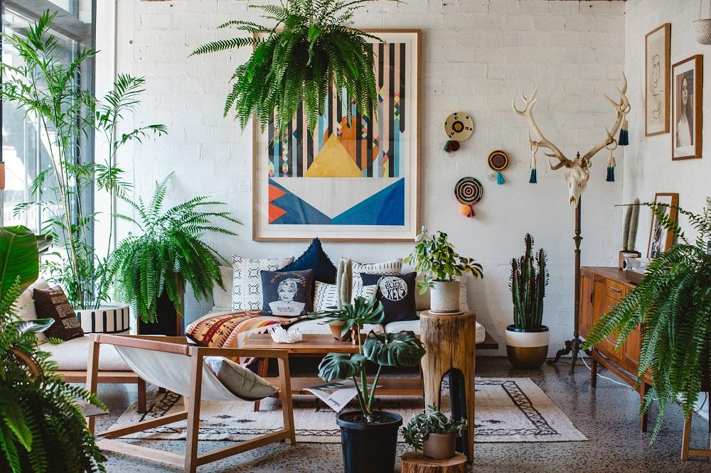 casa mais aconchegante - sala com plantas